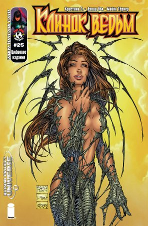 Witchblade #025