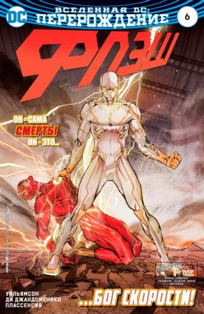 The Flash #06
